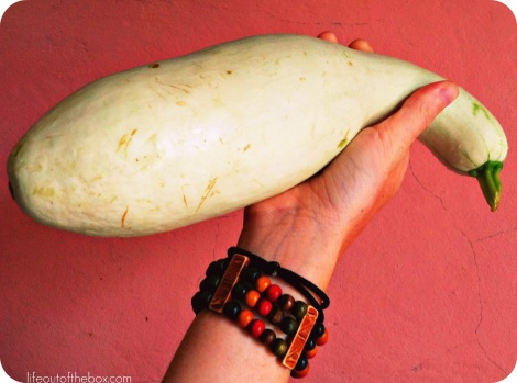 A Delicious Nicaraguan Dish