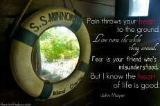 Pain throws your heart to the ground. Love turns the whole thing around. Fear is your friend who's misunderstood. But I know the heart of life is good. -John Meyer