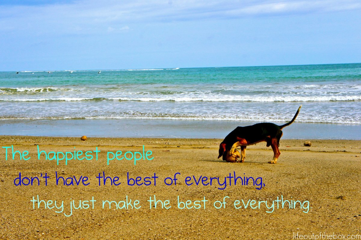 The happiest people don't have the best of everything. They just make the best of everything.