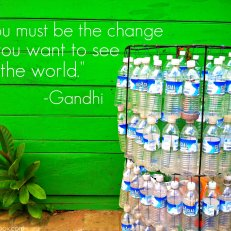 You must be the change you want to see in the world. -Gandhi