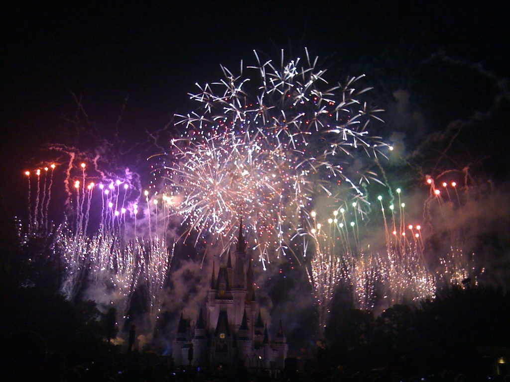 Life Out of the Box in Disney World, Florida