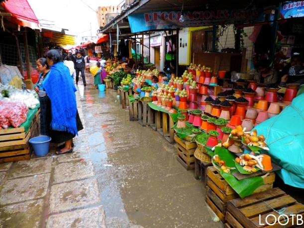 Life Out of the Box explores the San Cristobal Markets in Mexico